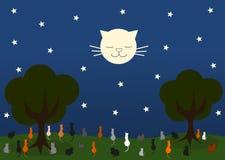 Gatto che guarda il gatto della luna in una bella notte stellata Fotografie Stock