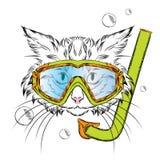 Gatto che indossa una maschera per tuffarsi hipster Svago in mare vacanza swimmer Fotografia Stock
