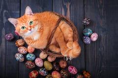 Gatto che si siede nel canestro su un fondo di legno con le uova di Pasqua Immagini Stock Libere da Diritti