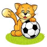 Gatto con la sfera di calcio Immagine Stock