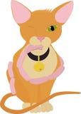 Gatto con le salsiccie, gattino arancio del fumetto Fotografia Stock