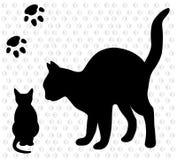 Gatto con un gattino Fotografia Stock Libera da Diritti