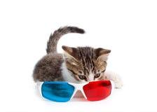 Gatto del cucciolo con i vetri 3d Fotografie Stock Libere da Diritti