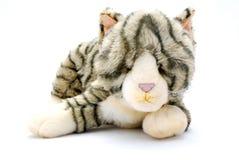 Gatto del giocattolo Fotografie Stock Libere da Diritti