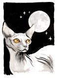 Gatto della Sfinge e cielo stellato Fotografie Stock Libere da Diritti