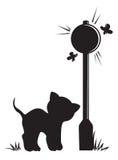 Gatto della siluetta che sta vicino alla lampada Fotografie Stock