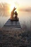 Gatto di amore del cane, tramonto di sorveglianza Fotografia Stock
