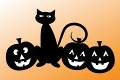 Gatto di Halloween con le zucche Fotografia Stock Libera da Diritti
