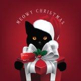 Gatto di Natale di Meowy con il grande regalo Fotografia Stock Libera da Diritti