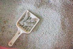 gatto di sabbia di pulizia del gatto della toilette in un cestino per i rifiuti Fotografie Stock