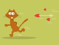 Gatto divertente Illustrazione di Stock