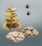 Gatto e cibo per cani, ossequio dell'animale domestico Immagini Stock