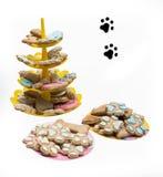Gatto e cibo per cani, ossequio dell'animale domestico Fotografia Stock