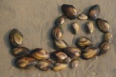 Gatto fatto dalle coperture del mollusco Fotografia Stock Libera da Diritti