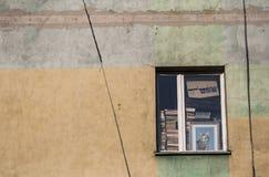 Gatto in finestra Fotografia Stock Libera da Diritti