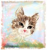 gatto lanuginoso royalty illustrazione gratis