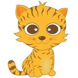 Gatto marrone sembrante sveglio della banda con i grandi occhi Fotografia Stock