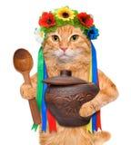 Gatto nel costume ucraino tradizionale Fotografia Stock