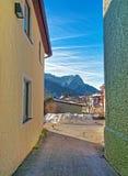 Gatto nella via di Garmisch-Partenkirchen Fotografia Stock