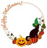 Gatto nero in cappello della strega e zucca di Halloween Fotografie Stock