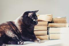 Gatto nero che si trova sulla tavola bianca, pila di vecchi libri su fondo fotografie stock libere da diritti