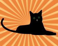 Gatto nero con gli occhi verdi Immagini Stock Libere da Diritti