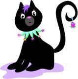 Gatto nero con il collare del fiore Fotografia Stock