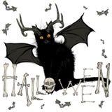 Gatto nero del diavolo Fotografia Stock Libera da Diritti