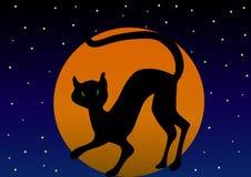 Gatto nero di Halloween Fotografia Stock Libera da Diritti