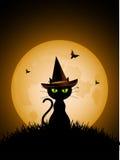 Gatto nero di Halloween con il cappello della strega Immagini Stock