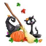 Gatto nero di Halloween, zucca, whist, cappello della strega, foglie di autunno Fotografia Stock