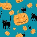 Gatto nero e zucche della priorità bassa di Halloween Fotografia Stock Libera da Diritti