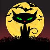 Gatto nero sembrante spettrale con gli occhi verdi che si siedono u Fotografia Stock Libera da Diritti