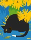 Gatto nero sorpreso Fotografie Stock Libere da Diritti