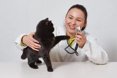 Gatto nero sveglio al veterinario del medico Su fondo bianco fotografie stock