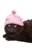 Gatto nero sveglio che porta protezione dentellare isolata Fotografia Stock