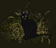 Gatto nero in un'erba appassita Fotografie Stock Libere da Diritti
