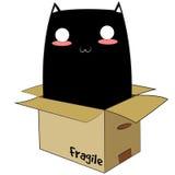 Gatto nero in una scatola Fotografia Stock