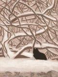 Gatto in neve Immagini Stock