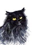 Gatto ritratto lanuginoso nero con le pitture royalty illustrazione gratis
