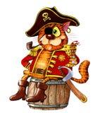 Gatto rosso cieco da un occhio del pirata fotografia stock libera da diritti
