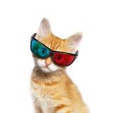 Gatto rosso con i vetri 3d Immagini Stock Libere da Diritti