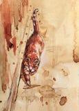 Gatto rosso di camminata Disegno realistico con l'acquerello fotografia stock