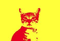 Gatto rosso su fondo giallo Fotografia Stock Libera da Diritti