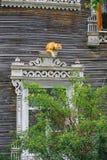 Gatto rosso sui precedenti di vecchia casa di legno Fotografie Stock Libere da Diritti