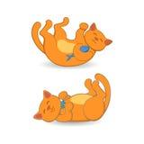 Gatto rosso sveglio che si trova sulla sua parte posteriore in due posizioni Immagini Stock