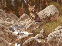 Gatto selvatico royalty illustrazione gratis