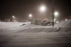Gatto selvatico che rimuove neve fotografie stock