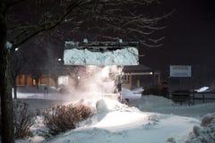 Gatto selvatico che rimuove neve Immagini Stock Libere da Diritti