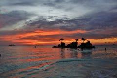 Gatto selvatico di tramonto fotografia stock libera da diritti